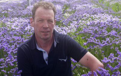 GreenlinQdata biedt uitkomst voor snijbloemenkweker Jan Star